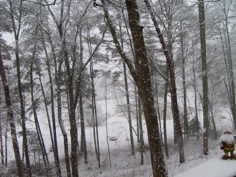 Winter was dramatic in 2010.